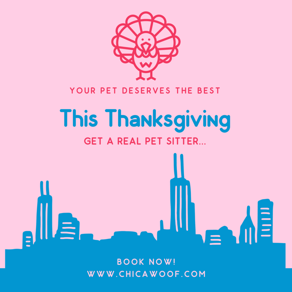 https://chicawoof.com/wp-content/uploads/2020/12/Blue-and-Brown-Illustrated-Turkey-Friendsgiving-Invitation-1024x1024-1.png