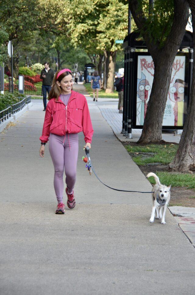 4 Benefits of Daily Dog Walking