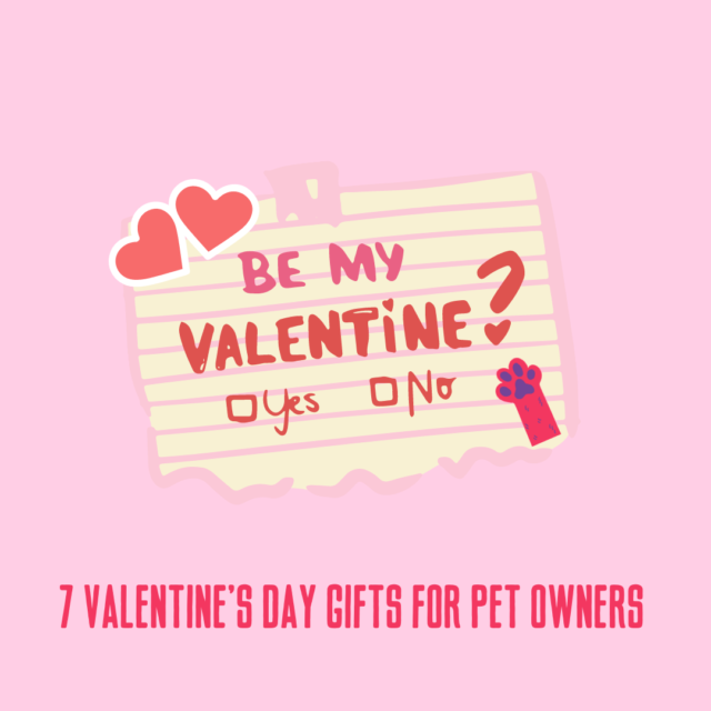 7 Valentine's Day Gifts for Pet Owners