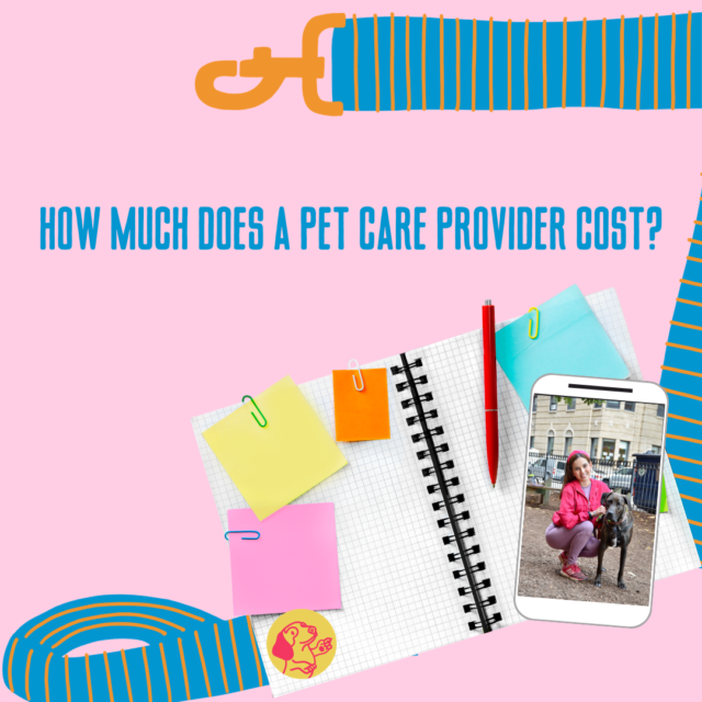 Customer questions: How much does a pet sitter/dog walker cost?